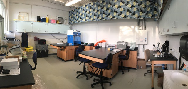 Projects – Judy Lemus Science